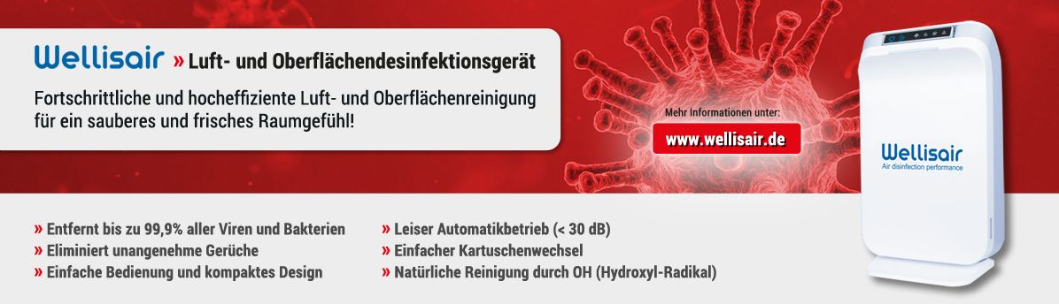 Zur Wellisair Website